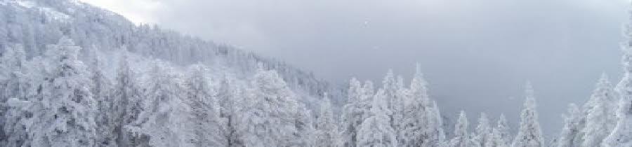 Poiana Brasov Romania Snow Report Poiana Brasov Snow Forecast